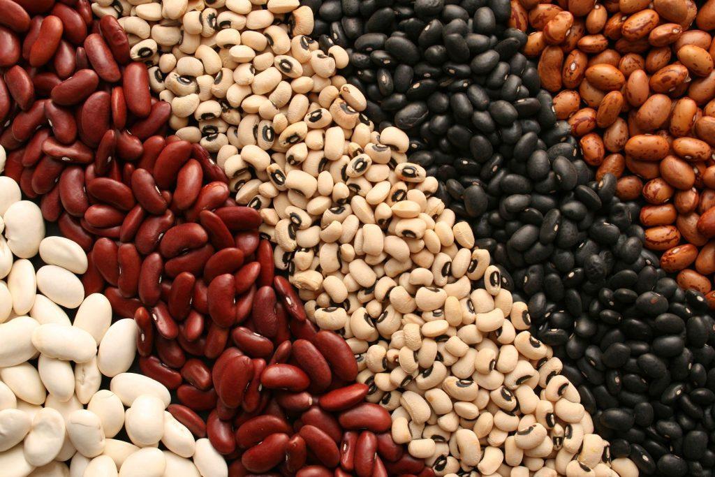 beans iron content